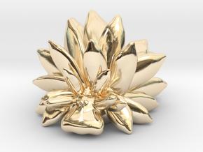 Costasiella Kuroshimae_Leaf Sheep  in 14k Gold Plated Brass: Small
