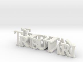 3dWordFlip: Tributari/2017 in White Natural Versatile Plastic