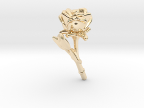 small but… in 14K Yellow Gold