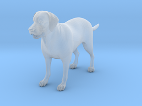 Dog in Smooth Fine Detail Plastic