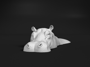 Hippopotamus 1:64 Lying in Water 1 in Smooth Fine Detail Plastic