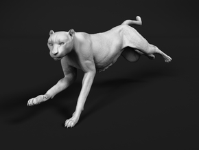 Cheetah 1:20 Running Female in White Natural Versatile Plastic