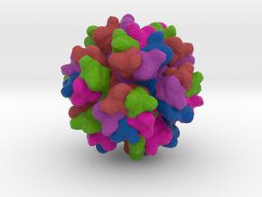 Adenovirus Serotype 3 in Full Color Sandstone
