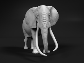 African Bush Elephant 1:160 Tusker Bull Satao in Smooth Fine Detail Plastic