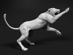 Lion 1:32 Striking Lioness in White Natural Versatile Plastic