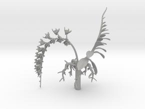 Imperial Moth Orchid for 10cm Maneki Neko Planter in Aluminum