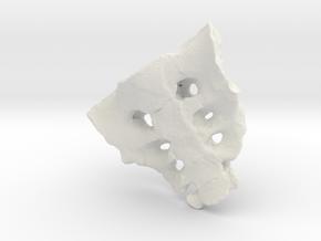 Lucy sacrum in White Natural Versatile Plastic