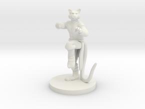 Catfolk Male Monk in White Premium Versatile Plastic