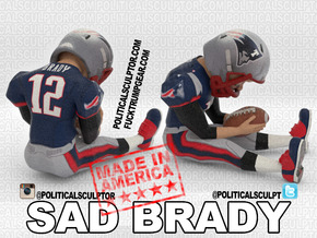 Deflategate Sad Brady Large New in Full Color Sandstone