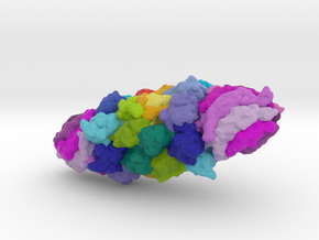 20S Proteasome with PA26 in Full Color Sandstone