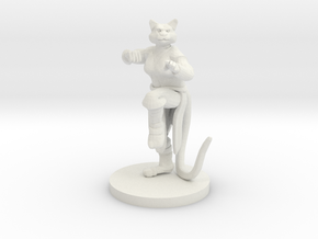 Catfolk Female Monk in White Premium Versatile Plastic