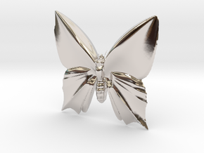 Butterfly-1 in Rhodium Plated Brass