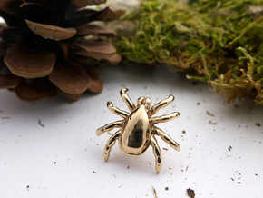 Tick Lapel Pin in Polished Bronze