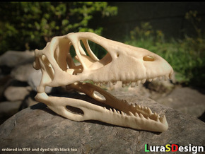 Dino Skull - Raptor Replica in White Natural Versatile Plastic