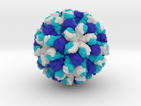 Rabbit Hemorrhagic Disease Virus in Full Color Sandstone