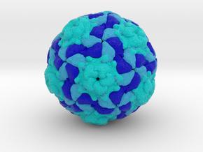 Equine Rhinitis A Virus in Full Color Sandstone