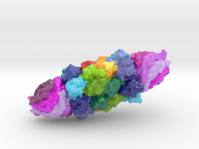 20S Proteasome with PA26 (Large) in Glossy Full Color Sandstone