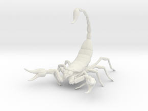 Scorpion in White Natural Versatile Plastic