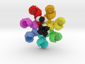 Apaf1 Caspase 9 in Full Color Sandstone