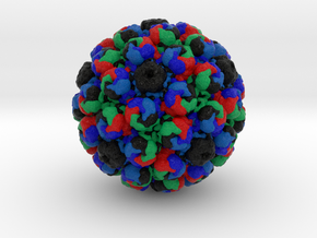 Simian Virus 40 in Full Color Sandstone