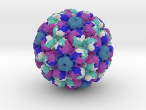 Simian Virus 40 in Full Color Sandstone