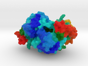 Nck-Interacting Kinase in Full Color Sandstone