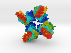 Creatine Kinase  in Full Color Sandstone