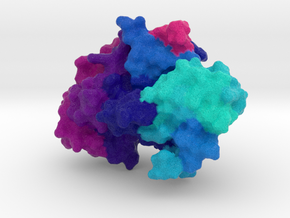Cyclin-Dependent Kinase 2 in Full Color Sandstone
