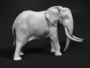 African Bush Elephant 1:160 Tusker Bull Dzombo in Smooth Fine Detail Plastic