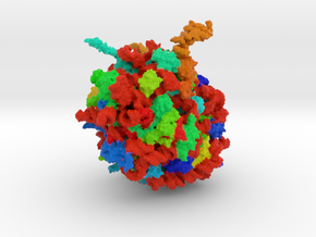 Ribosome Quality Control Complex in Full Color Sandstone