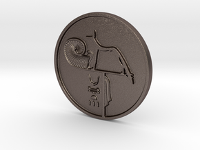 Large 'Merenptah' Wepwawet Coin in Polished Bronzed Silver Steel