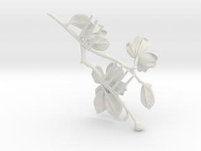 Dogwood Comb- Nylon in White Natural Versatile Plastic