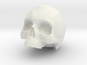 HUMAN SKULL in White Natural Versatile Plastic: Small