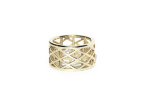 Archi Ring  in Fine Detail Polished Silver: Medium