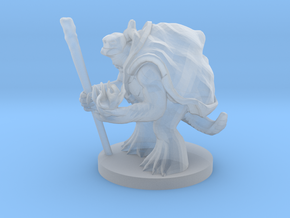 Turtlefolk Sorcerer in Smooth Fine Detail Plastic