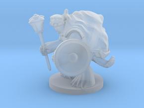 Turtlefolk Cleric / Paladin in Smooth Fine Detail Plastic