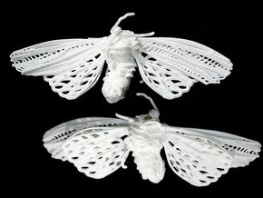 Moth Suffering Large in White Natural Versatile Plastic
