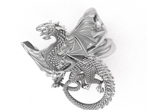 Whitby-wyrm dragon ring in Natural Silver: 9 / 59