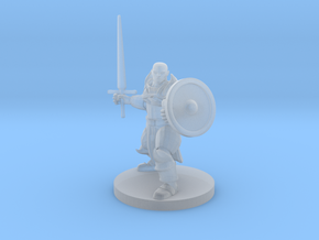 Bald Sword and Shield Paladin in Smooth Fine Detail Plastic