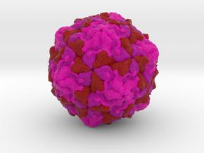 Picornavirus in Natural Full Color Sandstone