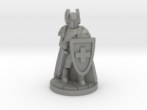 Order of the Red Cross Paladin Cleric in Gray Professional Plastic