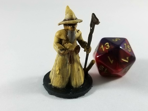 Catfolk Transmutation Wizard in Smooth Fine Detail Plastic