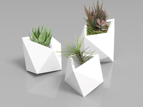 Poly Plant S in White Strong & Flexible Polished