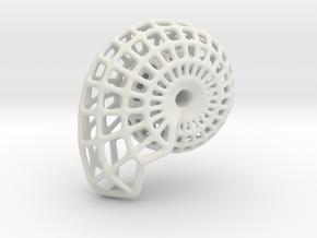 NAUTILUS  3cm length in White Natural Versatile Plastic