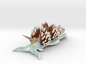 Hermissenda crassicornis in Glossy Full Color Sandstone