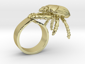Good Luck Beetle in 18k Gold Plated Brass