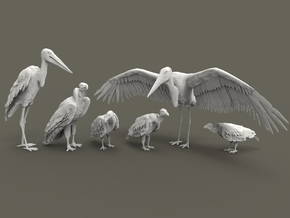 Scavenger Birds Set 1:87 six different pieces in Smooth Fine Detail Plastic