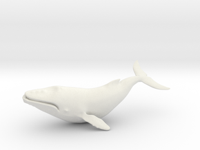 25cm blue whale in White Natural Versatile Plastic: Extra Large