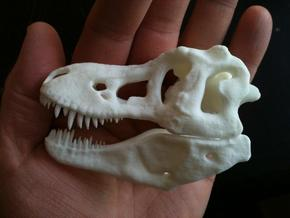 T-Rex Skull in White Natural Versatile Plastic
