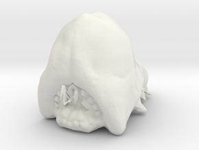 Brain Bug in White Natural Versatile Plastic